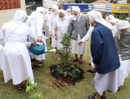 Irmãs Marcelinas dão sequência ao Projeto ComVida Verde 💚